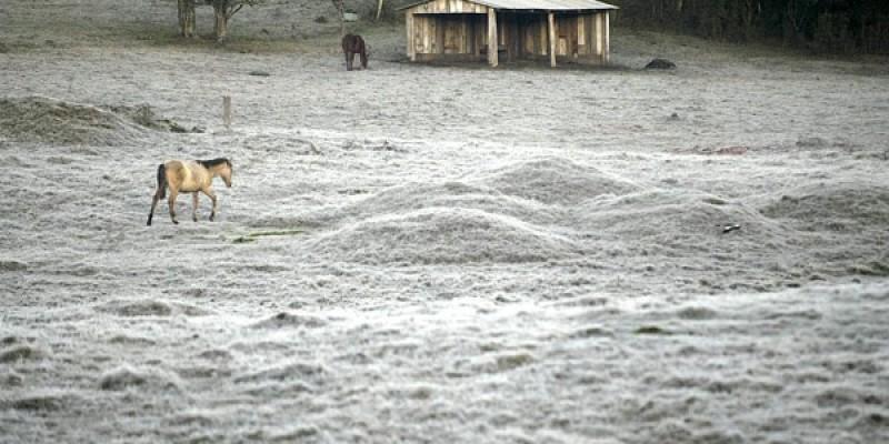 Semana vai ser marcada pelo frio em Santa Catarina