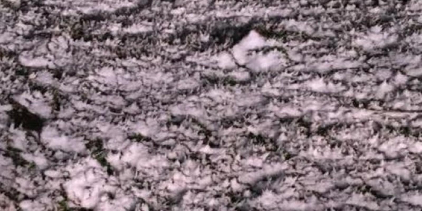 Santa Catarina registra a primeira neve acumulada do ano