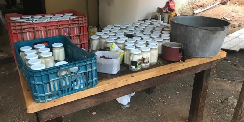 Palmitos produzidos de forma irregular são apreendidos pela Polícia Civil