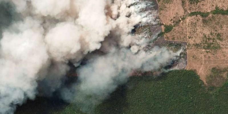 Queimadas sem controle na Amazônia provocam crise internacional