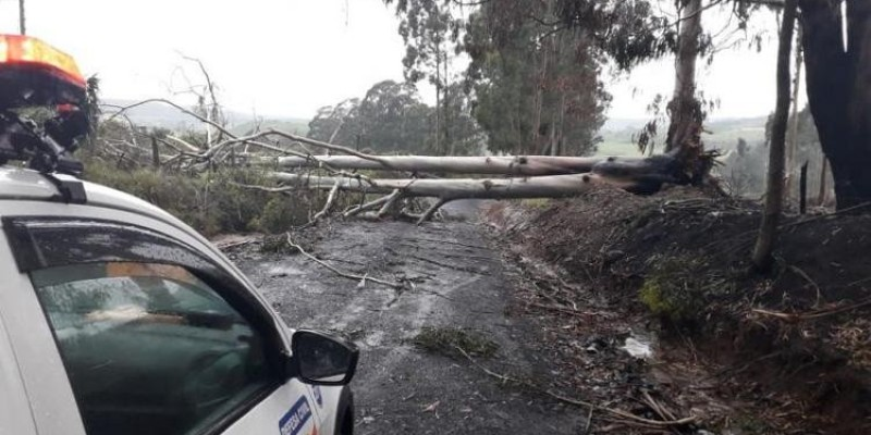 Temporal causa estragos em ao menos 5 cidades da Serra de SC e deixa 25 mil usuários sem luz