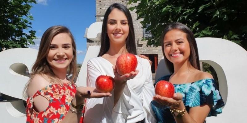 Festa nacional da maçã cancelada neste ano