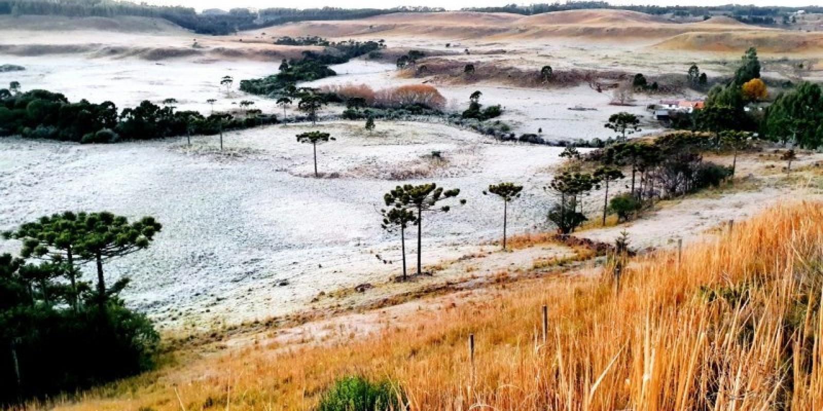Serra Catarinense: campos cobertos de geada e temperatura de -5,4ºC