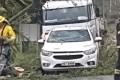 Ventos fortes: árvore cai em cima de veículo em São Ludgero