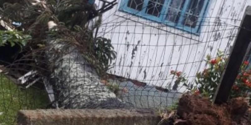 Duas quedas de árvores em menos de 100 metros e uma casa destruída em Criciúma