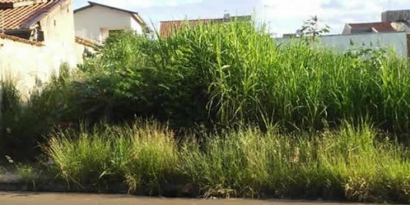 Prefeitura intensificará fiscalização de terrenos baldios e edificações com base na Lei Complementar 195/2017