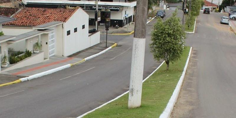 Avenidas recebem plantio de grama e corte permanente