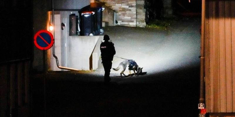 Homem mata várias pessoas na Noruega em ataque com arco e flecha